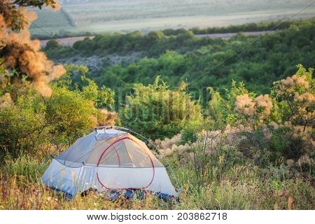 Semitransparent Travel Tent Stands On Green Glade