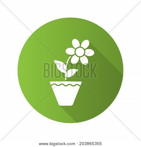 Crocus in flowerpot flat design long shadow glyph icon. Vector silhouette illustration