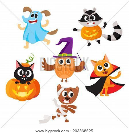 Set of cute funny animal characters dressed in Halloween costumes, cartoon vector illustration isolated on white background. Set of animal characters dressed as ghost, witch, mummy celebrate Halloween poster