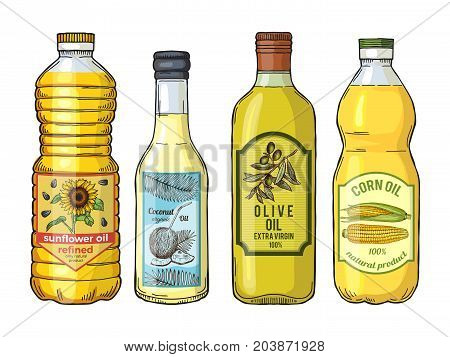 Labels for different oils. Sunflower, olive, corn and coconut. Vector pictures set. Bottle oil sunflower and coconut illustration