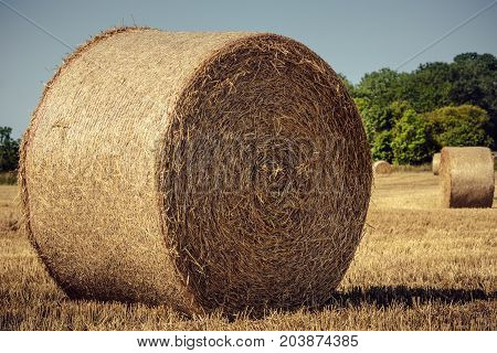 Vintage picture of a large bale of hay on a field in Sweden