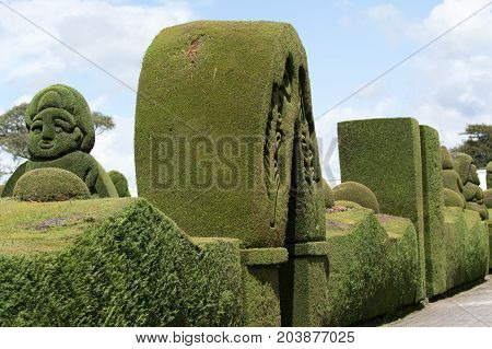 May 16 2017 Tulcan Ecuador: the cemetery of the high altitude border town is a famous tourist destination for its elaborate topiary