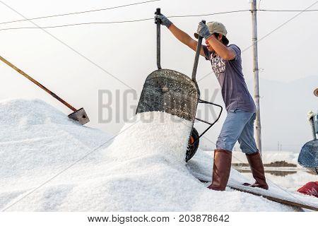 NHA TRANG VIETNAM - 4/12/2016: A man offloads salt at the Hon Khoi salt fields in Nha Trang Vietnam.