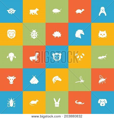 Collection Of Wildcat, Housefly, Fly And Other Elements.  Set Of 25 Zoology Icons Set.