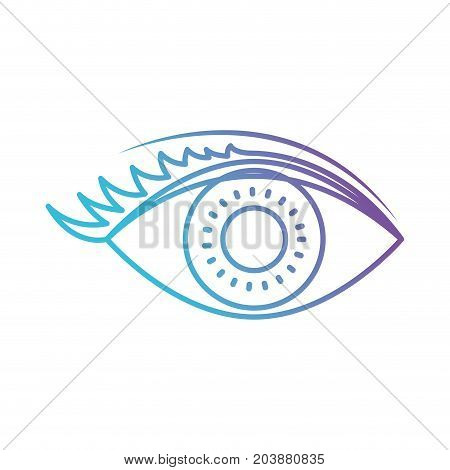eye with eyelashes in color gradient silhouette from purple to blue vector illustration