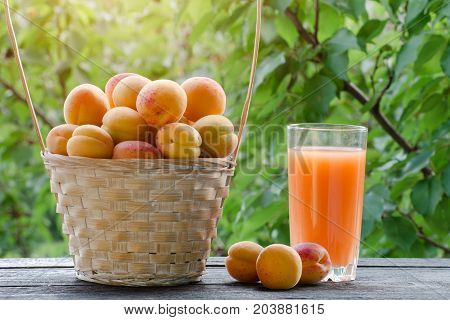 Apricots In A Wicker Basket And A Glass Of Juice On A Table Against The Background Of Green Branches