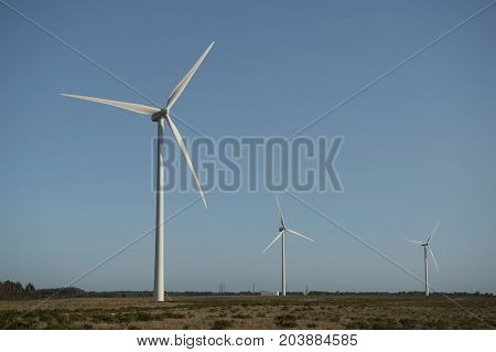 Close up of a wind energy farm in southern Portugal Europe producing renewable energy to make the planet a greener place