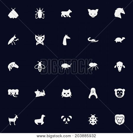Collection Of Playful, Hog, Ape And Other Elements.  Set Of 25 Alive Icons Set.