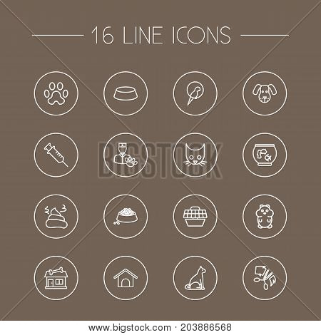 Collection Of Aquarium, Puppy, Vaccination And Other Elements.  Set Of 16 Animals Outline Icons Set.