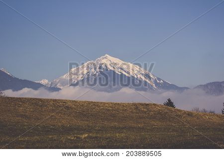 Top of mountain range covered in snow and fog mist with brown meadow slope and bright blue sky background in Bled, Landscape of prairie in winter with sierra covered in snowy under clear sky in Slovenia