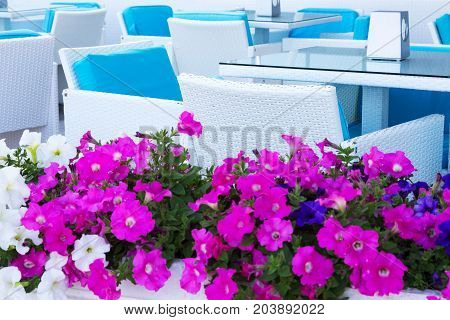 Beautiful Flowers In The White Vase On The Background Of Rattan Furniture, Chairs And Tables At The