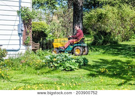 Ile D'Orleans Canada - June 1 2017: Man male on yard-man riding mower tractor in Quebec apple orchard farm landscaping mowing his garden backyard grass in countryside by house