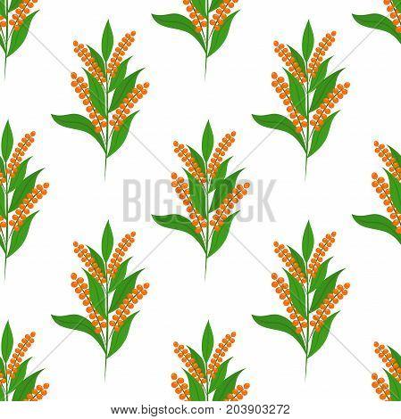 Quinoa seamless pattern. Healthy quinoa vegetarian food. Made in cartoon flat style. Vector illustration