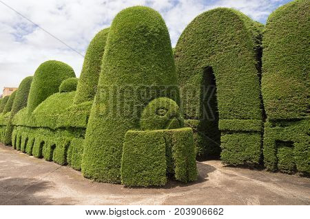 May 16 2017 Tulcan Ecuador: the cemetery of the high altitude border town is known for the most elaborate topiary in the Americas