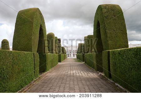May 16 2017 Tulcan Ecuador: the evergreen cypress topiary is the most elaborate in the Americas