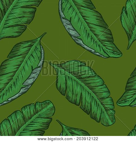 Tropical seamless background with tropical leaves. Exotic Vector design.