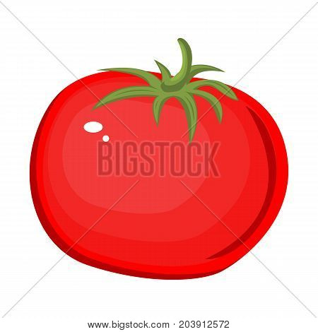 Tomato isolated single simple cartoon. Ripe tomato cartoon. Stock vector. Isolated white background.