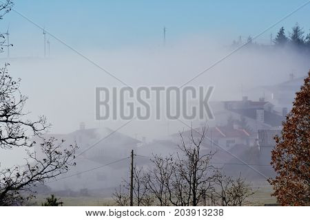 strong and mystical mist in the month of April