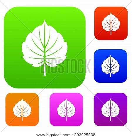 Alder leaf set icon color in flat style isolated on white. Collection sings vector illustration