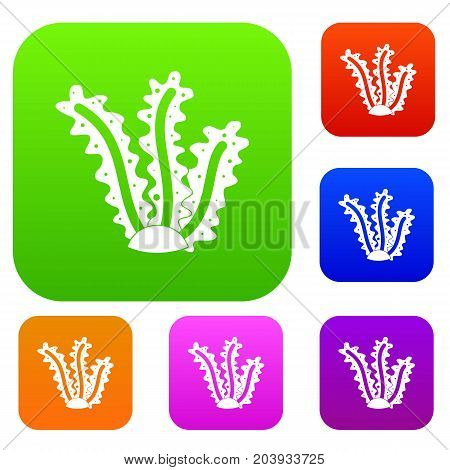 Seaweed set icon color in flat style isolated on white. Collection sings vector illustration
