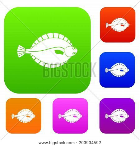 Flounder set icon color in flat style isolated on white. Collection sings vector illustration