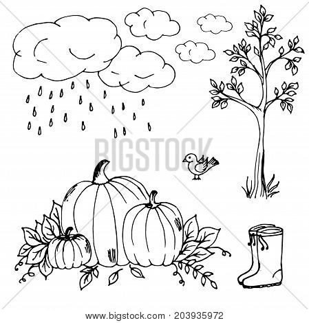 Doodle autumn clouds the rain the pumpkins and leaves wood rubber boots bird