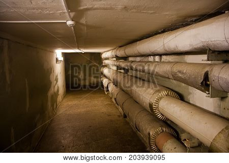 Underground cellar with water heating pipes of heating main