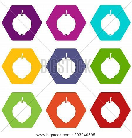 Quince fruit icon set many color hexahedron isolated on white vector illustration