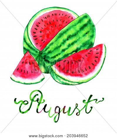 August month. Ripe watermelon. Watercolor isolated illustration for calendar design page. Concept of twelve months symbols and hand writing lettering