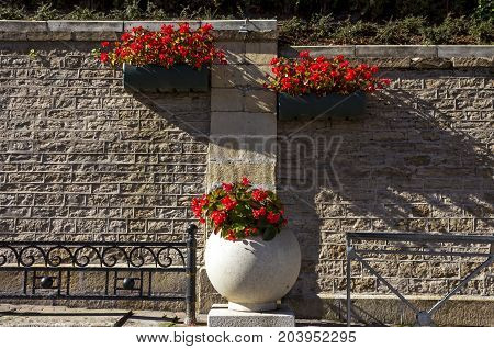 Original flowerbed with beautiful red flowers in the resort of Kislovodsk,Northern Caucasus.