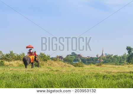 Tourists on elephant ride tourism, Ayutthaya Thailand
