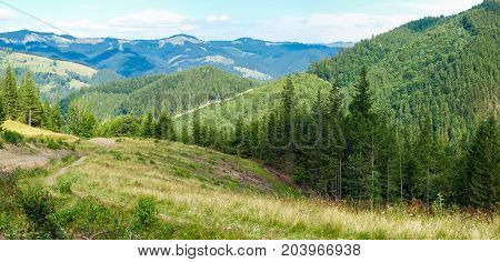 Panorama of Carpathian mountains with mountain slopes overgrown with forest and glade in the foreground