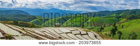 Panorama view of little hut and Rice terrace in a cloudy lighting surrounded by trees and mountains.