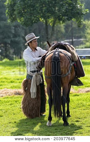 May 27 2017 Sangolqui Ecuador: cowboy in the Andes arranging saddle on his horse during a rural rodeo event