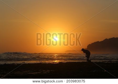picture,  afternoon,  sunset, beach, sun, landscape, nature