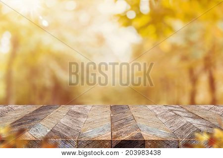 Empty old rustic wood plank table top with blur forest tree with sunlightAutumn fall backgorundMock up for display or montage of productbanner for advertise on online