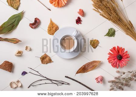 Cup Of Coffee With Autumn Dried Plants