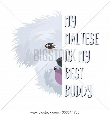 Illustration Dog Maltese - My Maltese Is My Best Friend. Puppy Dog eyes, Wagging Tail, Smiling, Ba