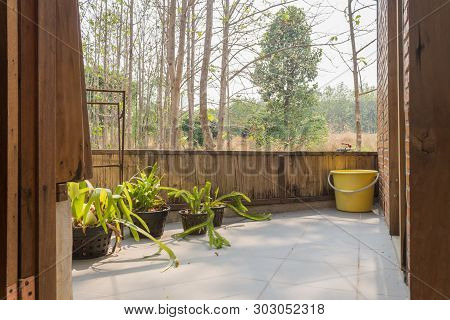Terrace Of Interior Design Room With Forest View. Interior Design Room Include Plants And Tree And B