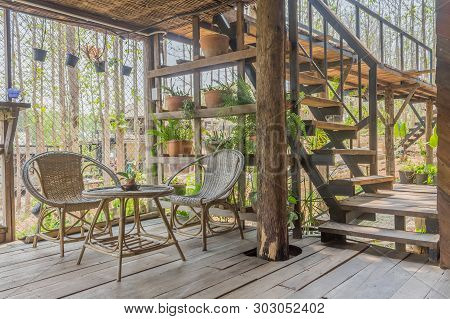 Interior Design Room Of Home Stay With Rattan Chair And Table And Tree And Stair. Interior Design Ro