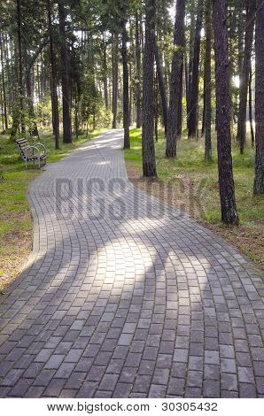 Tiled Path Curve In Park Forest. Bench Resort Area
