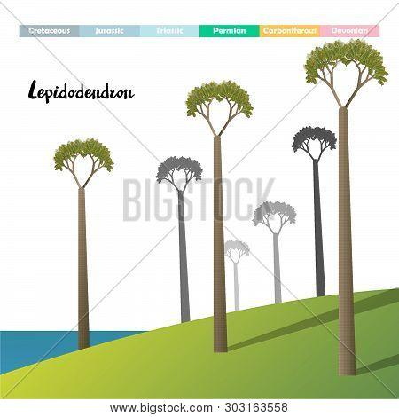 .lepidodendron Age Giant Plants Prehistori Vector Illustration