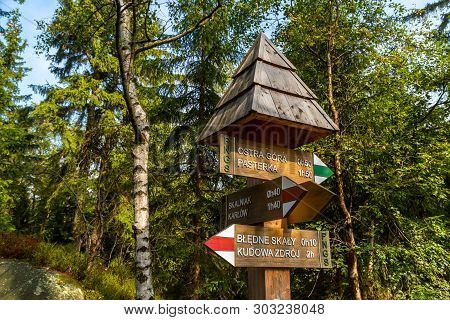 Kudowa Zdroy, Poland - September 15, 2019: Signpost Directional Arrows On Green Trees Background In