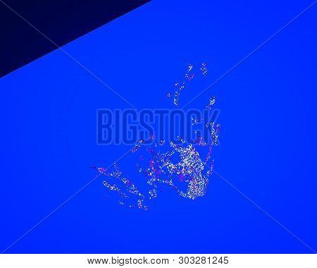 3D Rendering Of  Abstract Splash