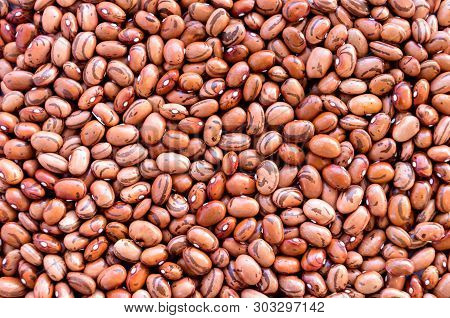 Beans Of Bean ( Beans ).  Background Of Many Grains Of Dried Beans. Brown Beans Texture. Food Backgr