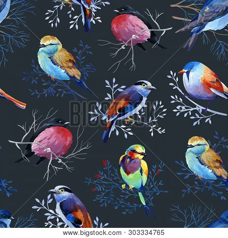 Gouahe Seamless Pattern With Bright Birds On Branches On Dark Background For Art Work And Wedding De