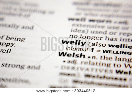 Word Or Phrase Welly In A Dictionary.