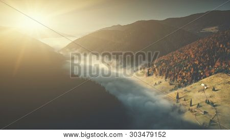 Deep Wild Wood Mountain Foggy Slope Aerial View. Misty Wildlife Habitat Pine Coniferous Landscape Overview. Scenic Thick Forest Surface Sight Clean Ecology Concept Drone Flight