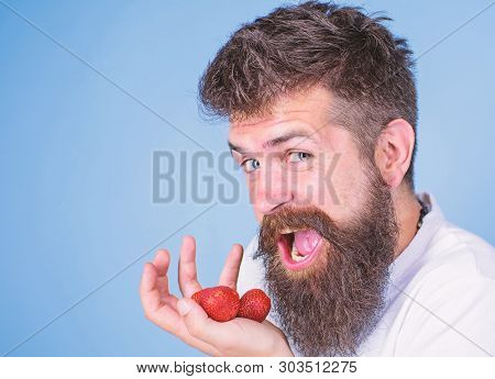 Man Happy Face Open Mouth With Beard Eats Strawberries. Want To Try My Berry Man Cheerful Gonna Eat