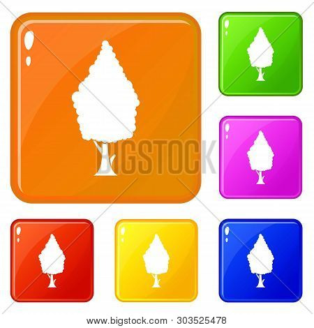 Cypress Icons Set Collection Vector 6 Color Isolated On White Background